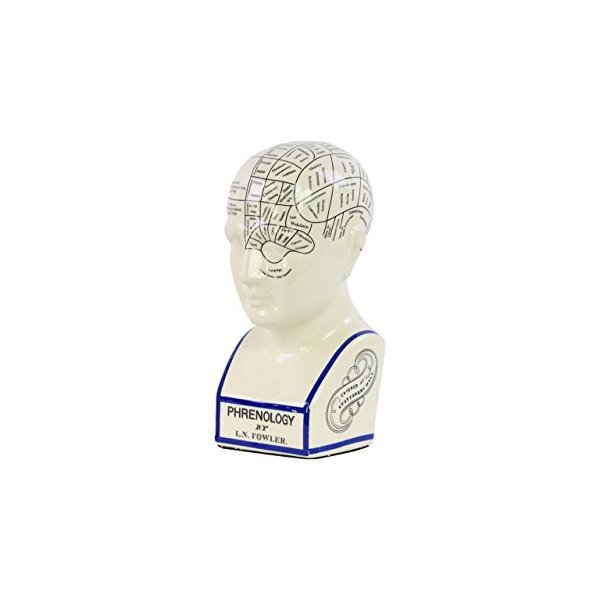 Urban Trends Ceramic Phrenology Head Bust, Large, Gloss White