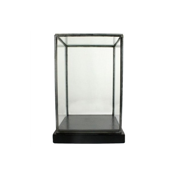 Pierre Glass Showcase Display Box, Black