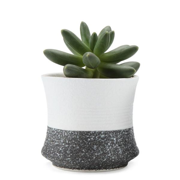 T4U 3.25 Inch Ceramic Korae Style Snow Serial No.3 Succulent Planter