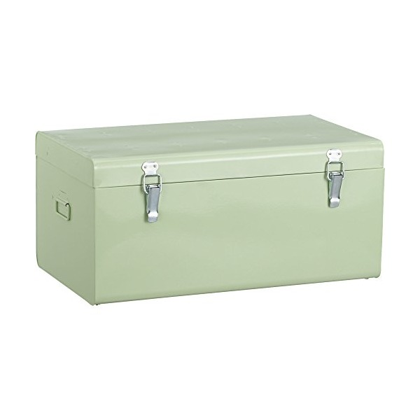 CB2 Versus Mint Galvanized Trunk