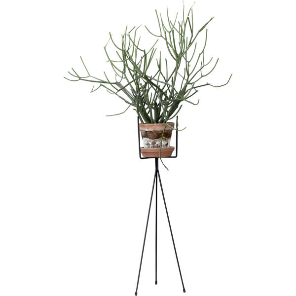 Scan Trends 4117 Plant Stands - Plant Stand - Small W: 13 x H: 50 cm
