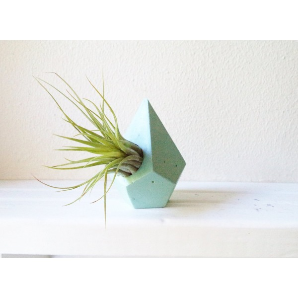 Geometric teardrop mini planter , air plant holder