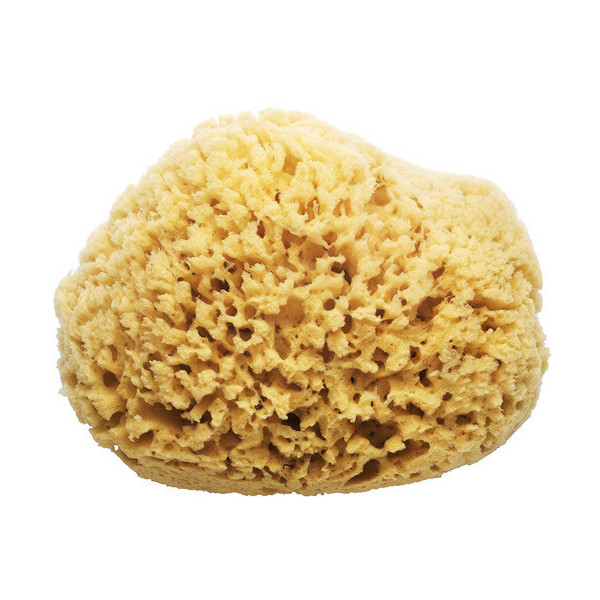 Swissco Sea Wool Natural Bath Sponge