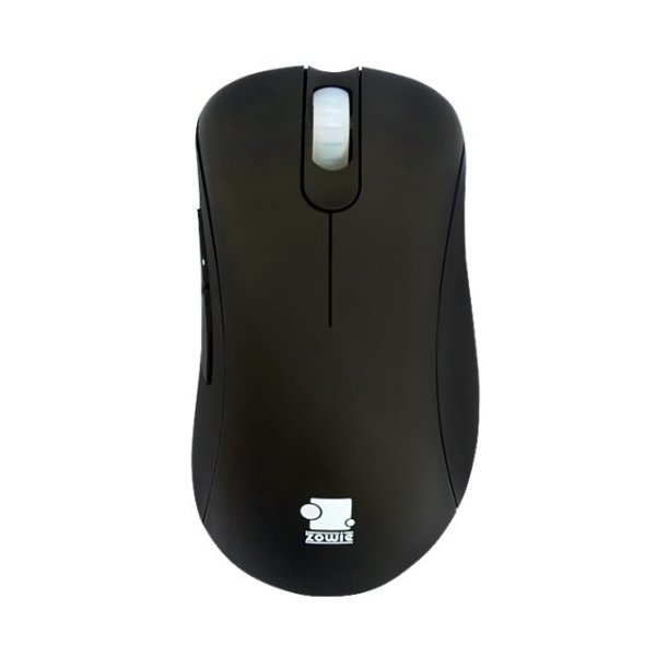 ZOWIE GEAR Optical Gaming Mouse (EC2-eVo Black)