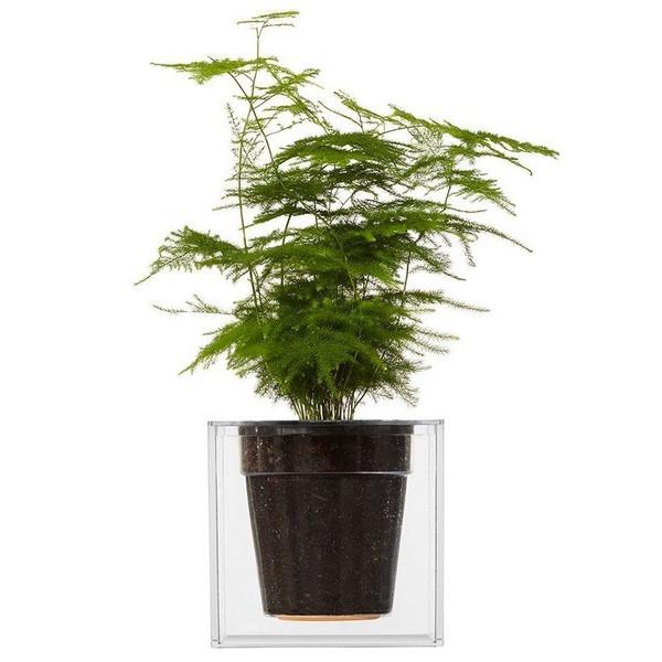 Boskke Cube Clear Plant Pot