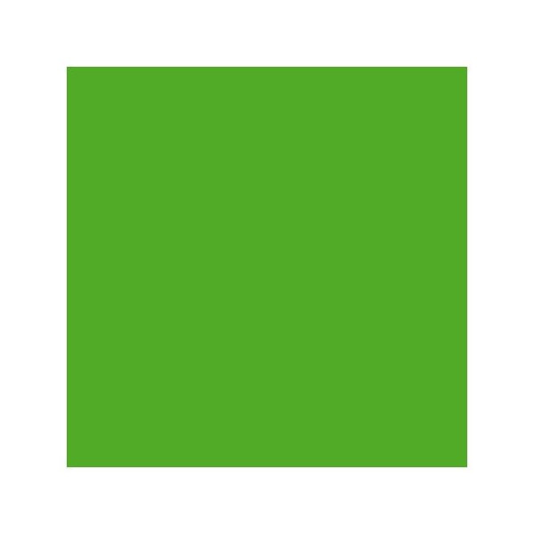 Montana Black High-Pressure Cans - Irish Green 400ml Can