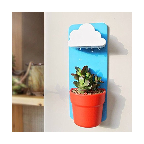 Singeek(TM) Newwest Wall Mount Rainy Pot Flower Pot With Cloud-Shaped Water Filter-Indoor Hanging Flower Planter-Pouring Shower Water like Raindrops (1, Sky Blue)