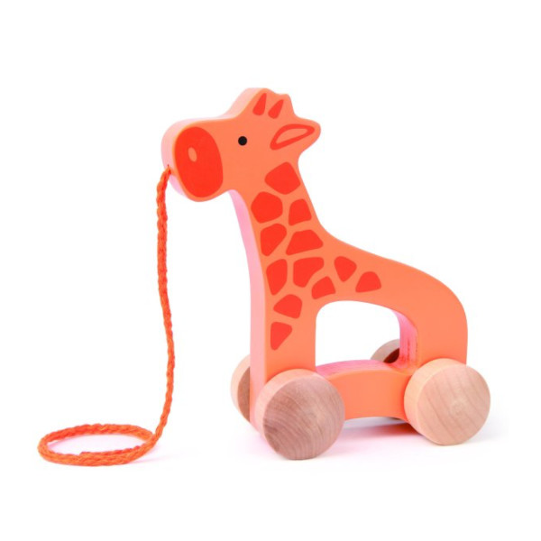 Push & Pull Giraffe Toy