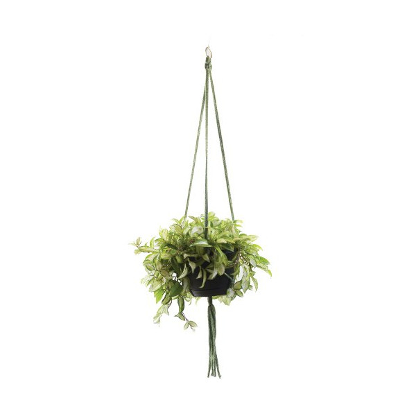 Wildwood MK-42MG 3 Leg Macrame Plant Holders, Moss Green, 42-Inch