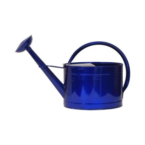 HIT 8584EXR Galvanized Heavy Gauge Steel Watering Can, 2-Gallon, Glazed Blue