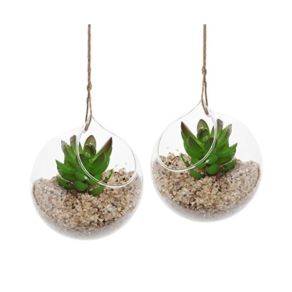 Hanging Air Plant Terrarium Planter, Set of 2