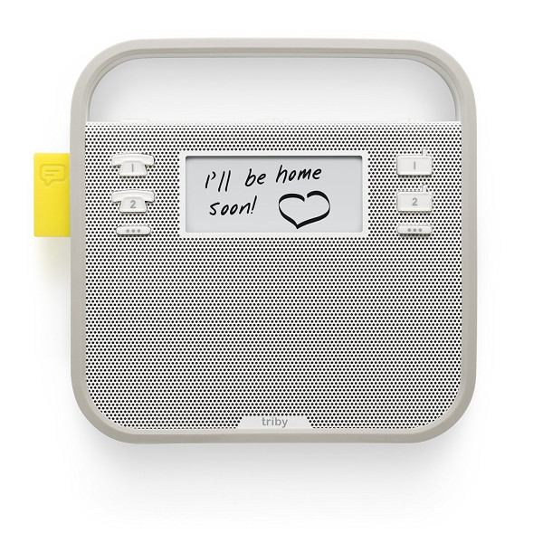 Triby - Alexa-Enabled Portable Speaker, Radio and Speakerphone, Grey