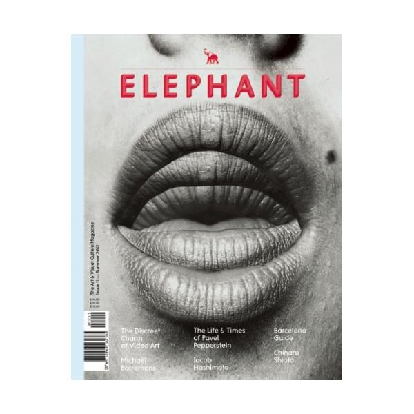 Elephant #11: The Arts & Visual Culture Magazine