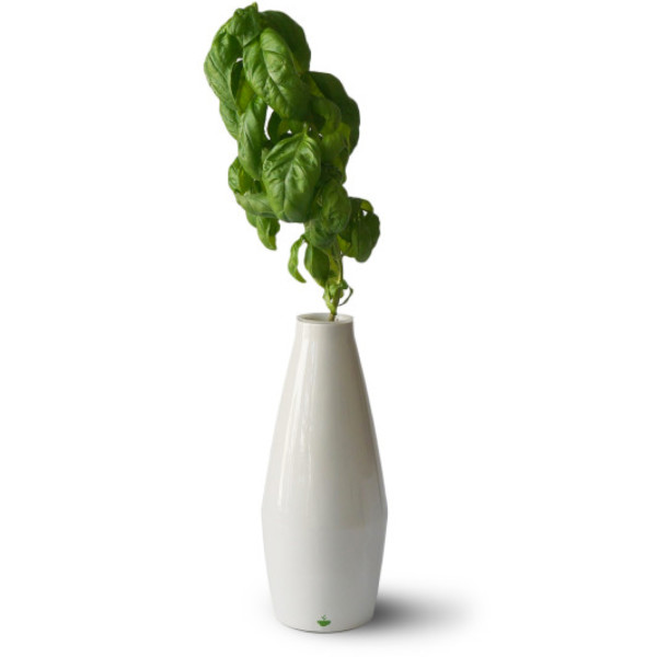 Cloud Farms Amphora Hydroponic Planter, White