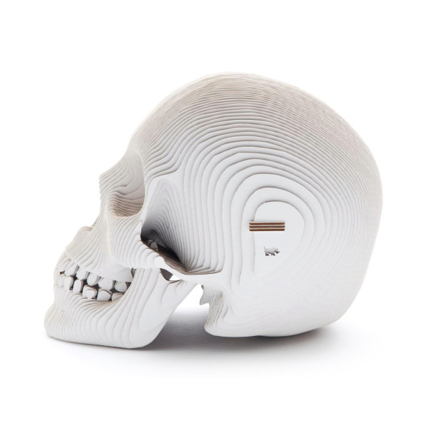Vince Cardboard Human Skull, White, Micro