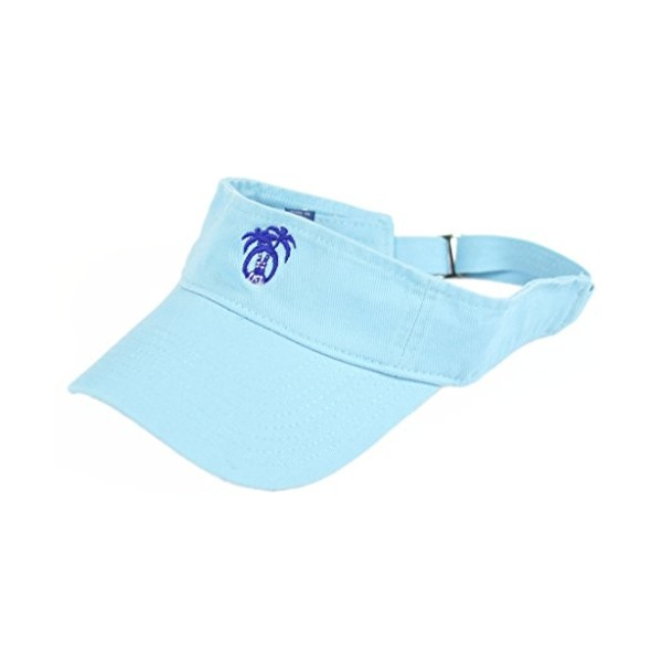 USA Palm Womens Logo Visor One SIze fits all Aqua Blue