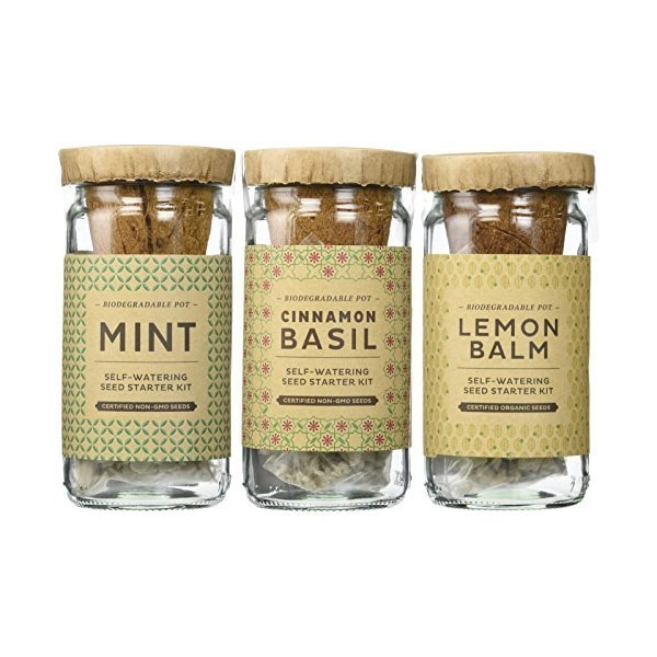 Modern Sprout Seed Starter Kit, Cocktail by Modern Sprout