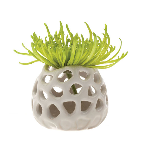 Chive Gideon, Ceramic Flower Vase and Air Plant Holder