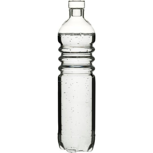 Sagaform Pet Thermal Glass Water Bottle with Stopper