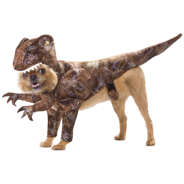 Animal Planet Raptor Dog Costume, Small