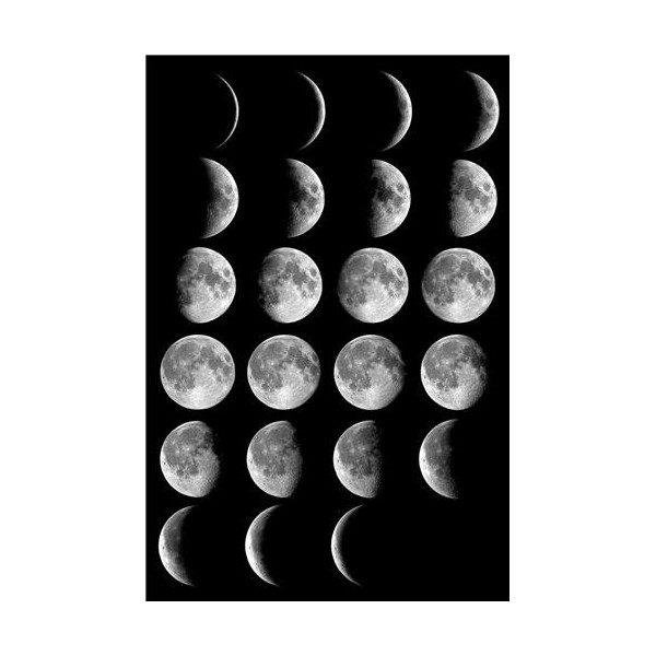 Moon Phases Glossy Poster