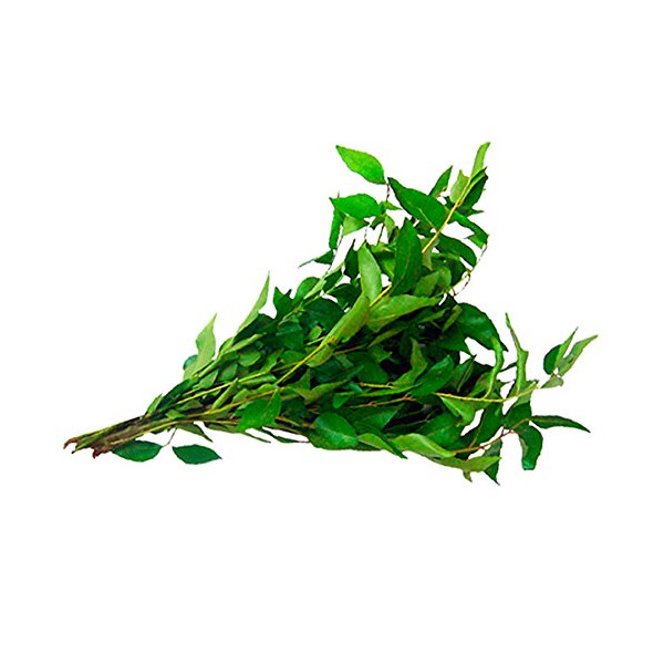 FRESH CURRY LEAVES - 2 x 28g PACKS