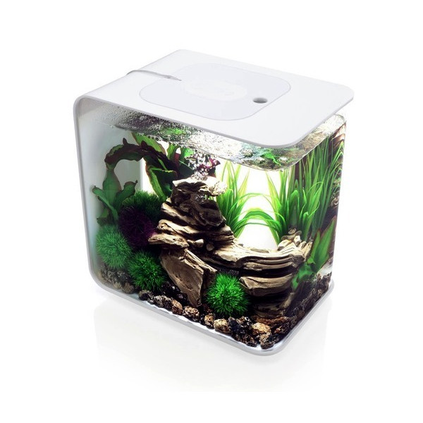 BiOrb 15L Flow Aquarium, White