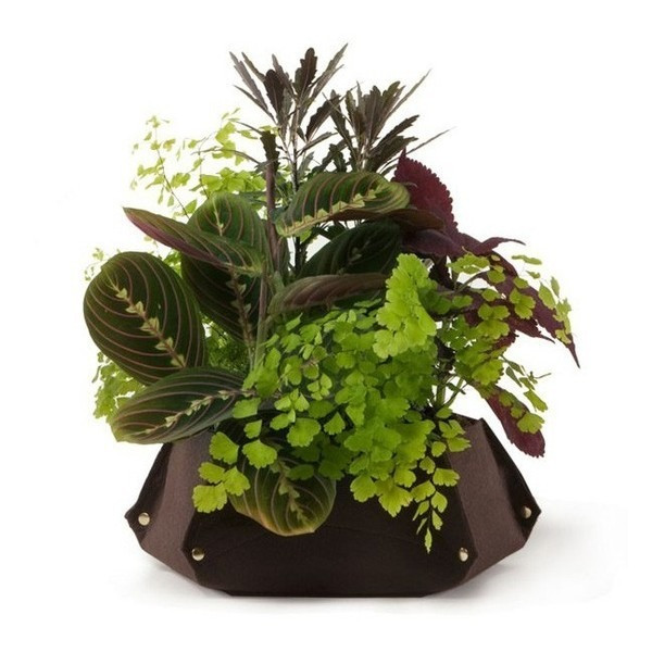 Woolly Pocket Tina Island Planter, Chocolate