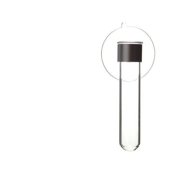 Chive Test Tube Suction Vase
