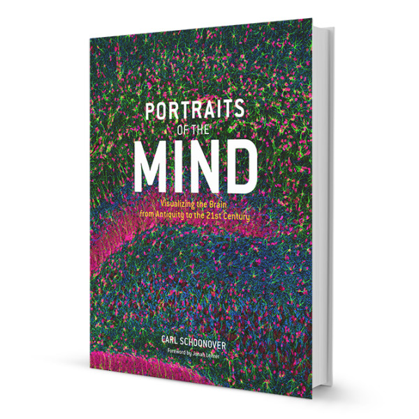 Portraits of the Mind: Visualizing the Brain