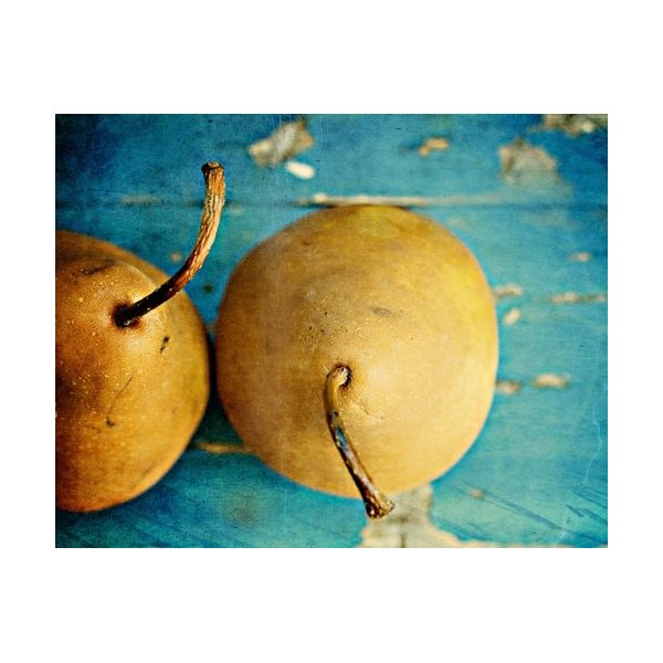 20x30 in. Jennifer DiGuglielmo Pear Pair