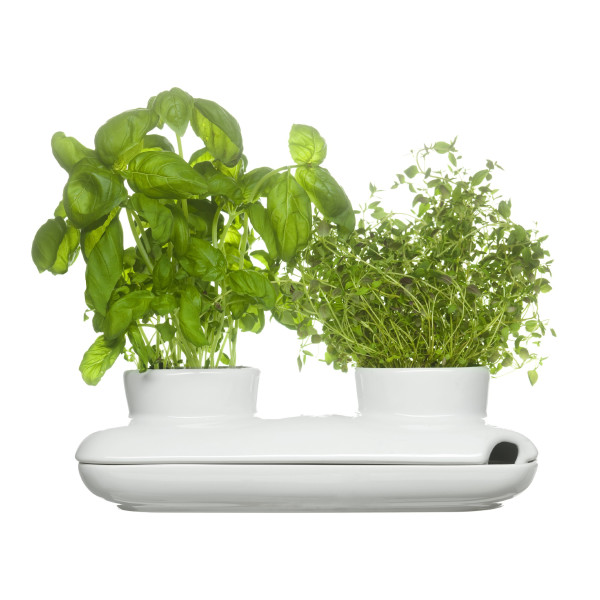 Sagaform Stoneware Herb Pot Duo, White