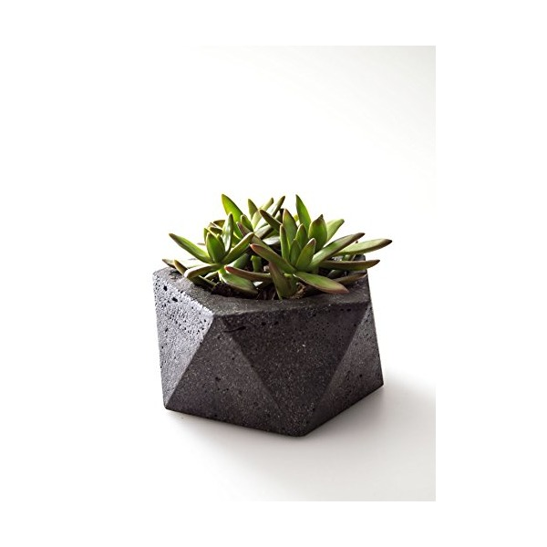 Hand Poured Geometric Concrete Dish Bowl | Industrial Icosahedron Concrete Planter