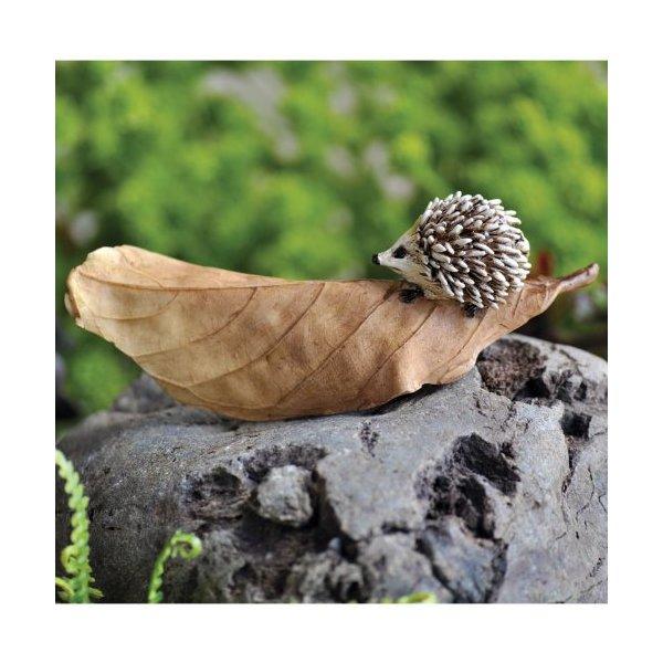 Fairy Garden Hedgehog On Leaf