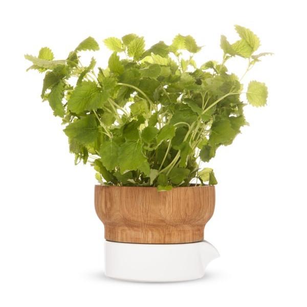 Sagaform Fix Herb Pot
