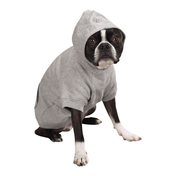 Zack & Zoey Polyester/Cotton Basic Dog Hoodie, Medium