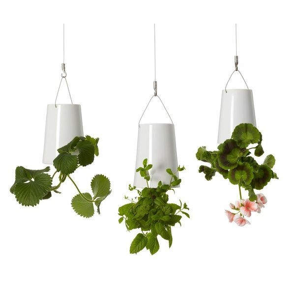 Boskke Sky Planter Ceramic Mini Triple Pack with Ceiling Extensions