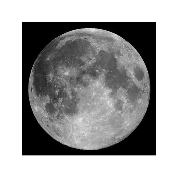 Full Moon - Peel and Stick Wall Decal by Wallmonkeys