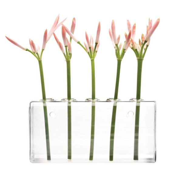Chive Hudson Wall-Hanging Glass Flower Vase