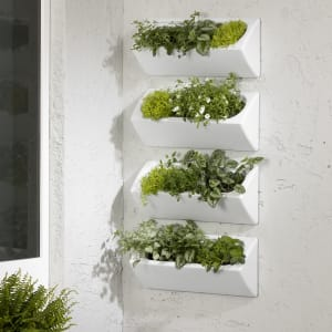 Dalya - Outdoor Wall Planter – Set of 4