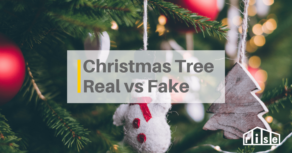 Oh Christmas Tree: A Comparison Guide To Real Vs Fake