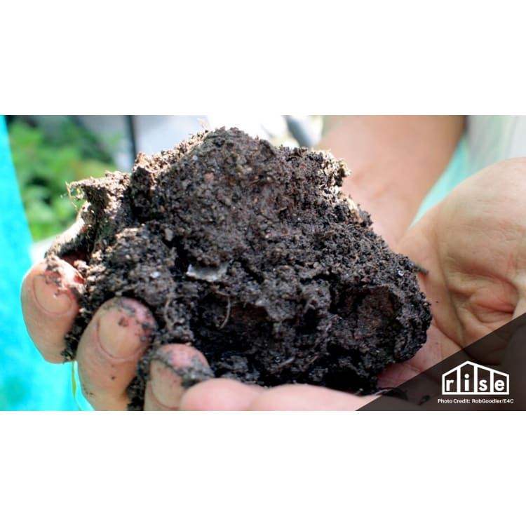 Biochar Production on a Homeowner Level