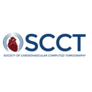 VIRTUAL COMPREHENSIVE CARDIAC CT: CTP AND CT FFR WORKSHOP 2020