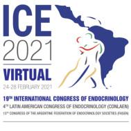 ICE 2021