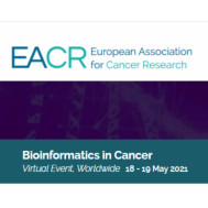 Bioinformatics in Cancer