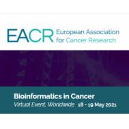 Bioinformatics in Cancer