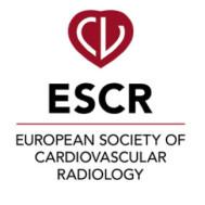 European Society of Cardiovascular Imaging (ESCR) Annual Scientific Meeting 2021
