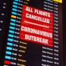 Do Travel Restrictions Work Against COVID-19?