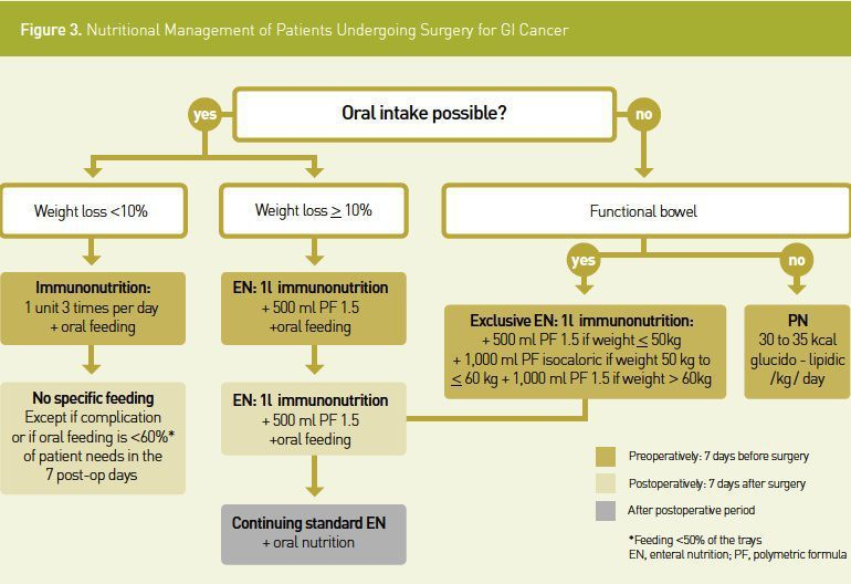 gastric cancer nutrition guidelines)