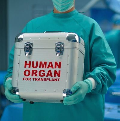 Mayo Study: AKI Kidneys Can Be Safely Transplanted